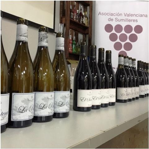 Camino del Norte Compañía de Vinos en Asvasu