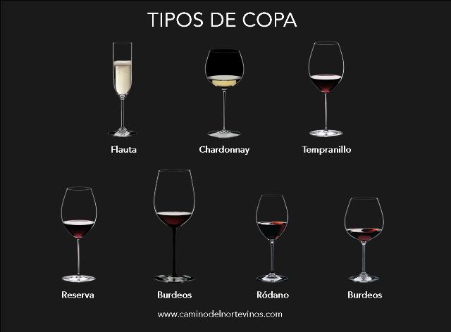 Tipo de copas de vino