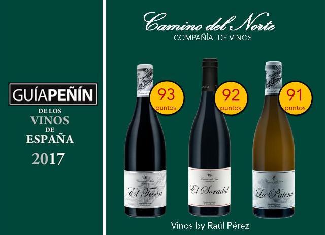 Camino-del-Norte-Puntos-Guia-Peñin-2017