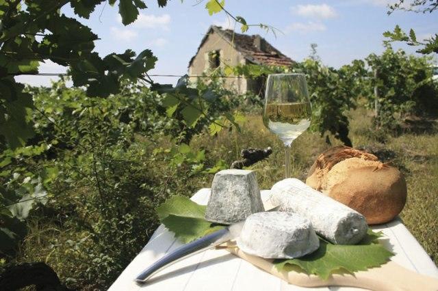 Maridaje vino, costumbre y paisaje
