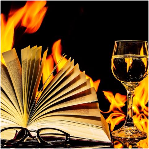 Los mejores libros para aprender de vinos