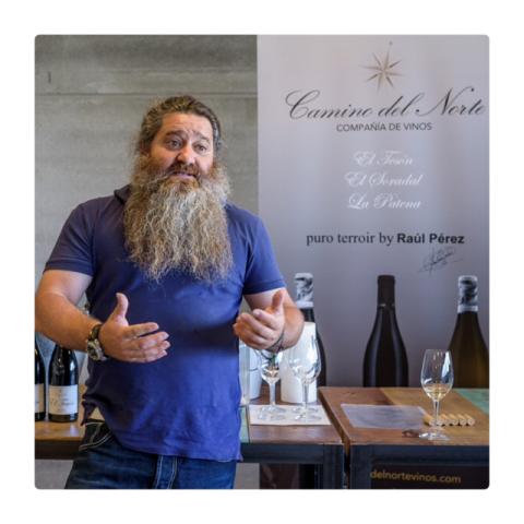 Raúl Pérez enólogo de Camino del Norte, Compañía de Vinos